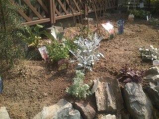 garden09-10-19-3.jpg